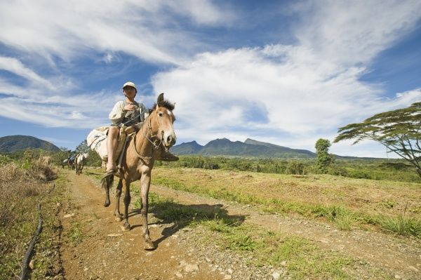 Boy riding pack horse, descending from inactive volcano, Mount Kitanglad, Kitanglad Mountain Range, Mindanao Island, Philippines