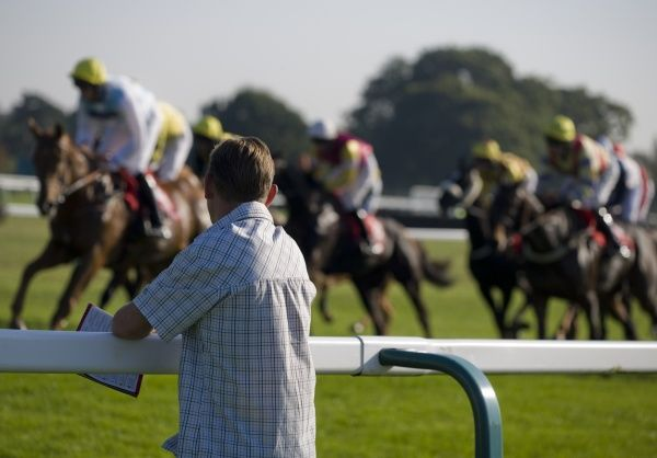 Horse racing, punter leaning on rail at racecourse, watching Thoroughbred racehorses during race, England, october